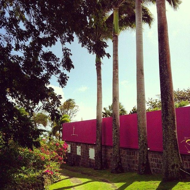 Artwork on a pink wall (Kirk Mechar) www.kirkmechar.com  #Nevis #Caribbean #art #pink