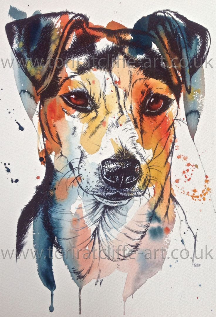 1000 images about tori ratcliffe art watercolour for Dog painting artist