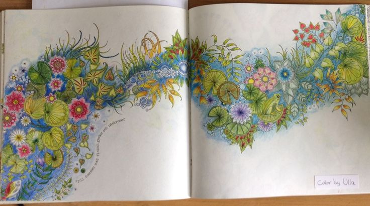 """My version, following a tutorial, from the book """"Secret Garden"""" by Johanna Basford, painted with Lyra Polycolor pencils."""