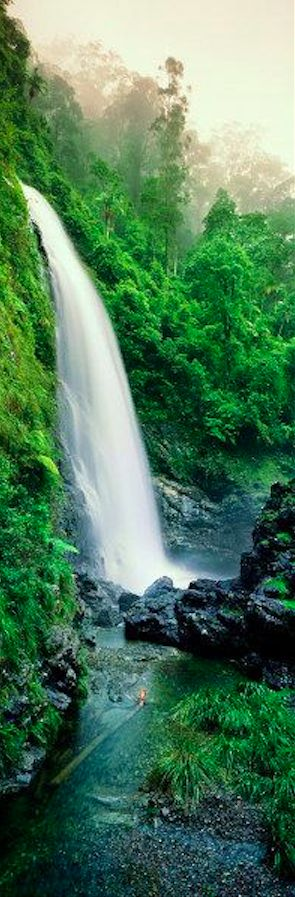 Cedar Falls at Dorrigo National Park in New South Wales, Australia • Ken Duncan Photography