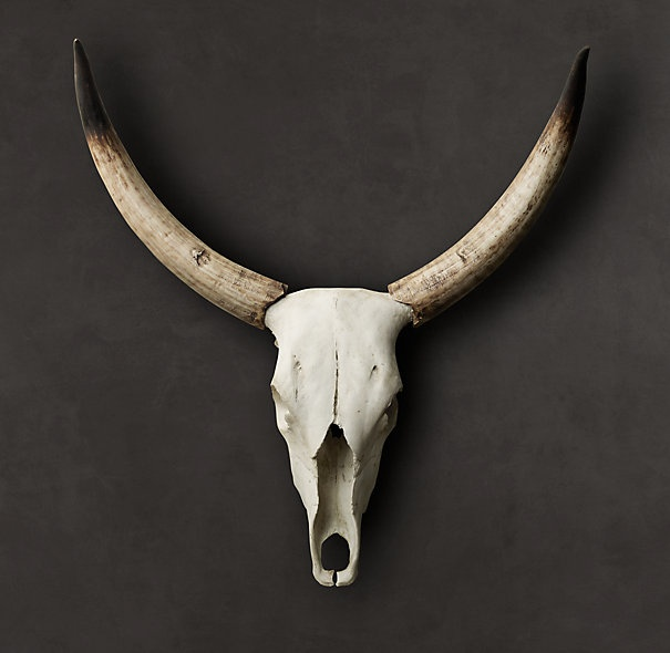 Steer Horns in cast resin: Steering Horns, Dining Rooms, Wall Art, Skull, Restoration Hardware, Antlers, Cast Resins, Products, Photo