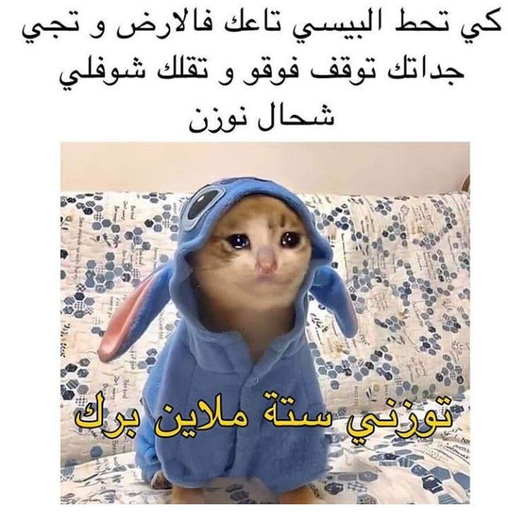 تمبات نيودوس نيودوس كوميك ميمز صور مضحكة صور تعليقات فيسبوك صور للفيسبوك صور ترحيب تيمب سوري صور فيس مضحكة Funny Pictures Fortnite Best Funny Pictures
