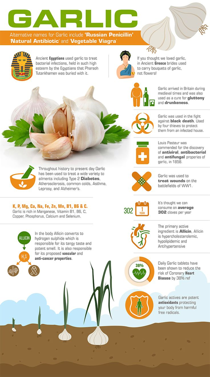 Garlic , Garlic Supplements , Garlic Tablets, Garlic History, Health Benefits of Garlic.