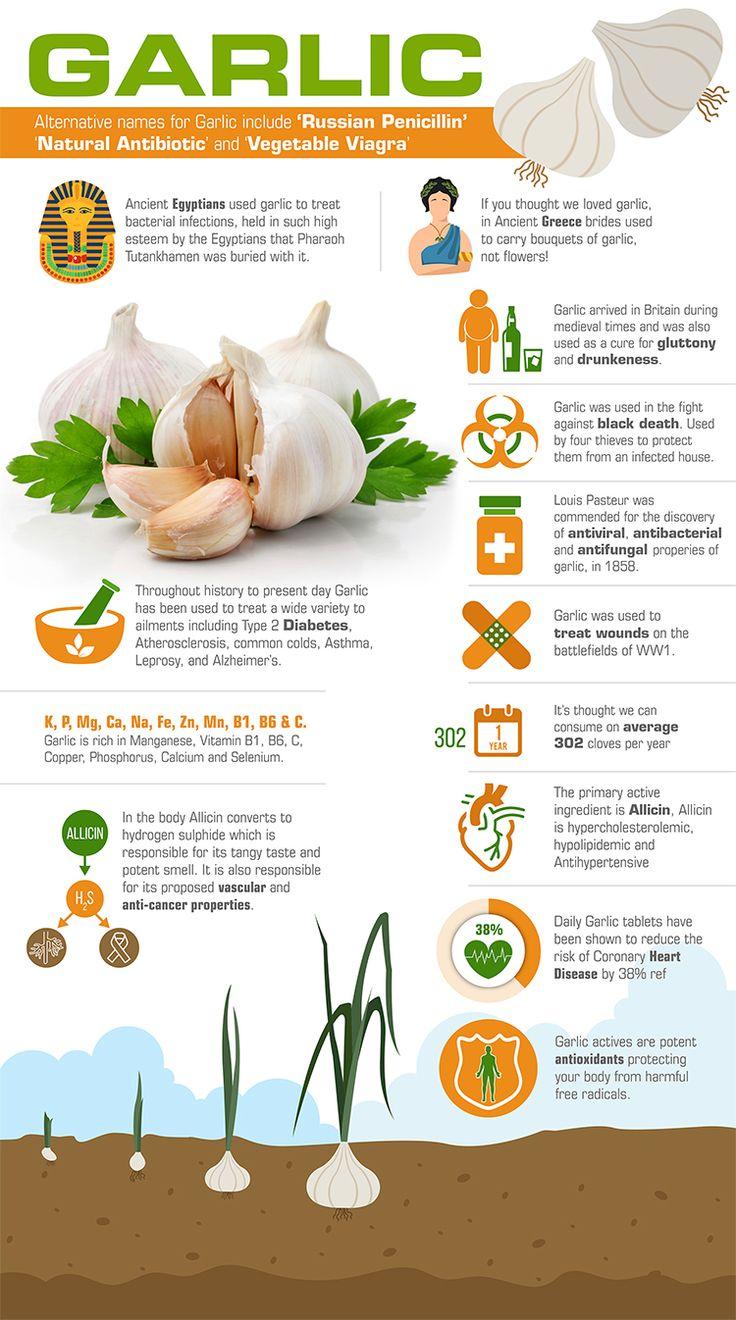 Garlic , Garlic Supplements , Garlic Tablets, Garlic History, Health Benefits of Garlic.
