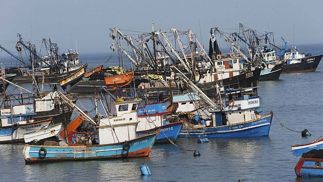 Frente Nacional de Pesca: Barcos chinos pescan sin licencia en mar peruano