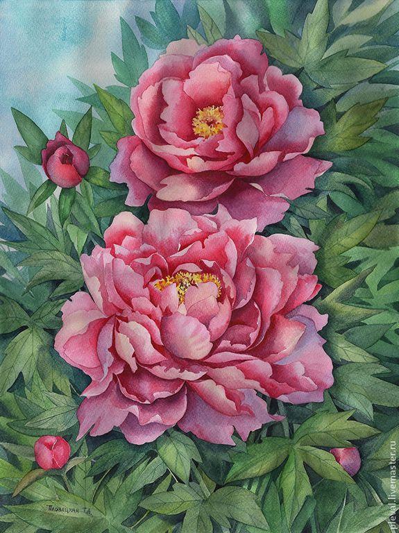 Watercolors Pink piones by Plovetskay Tatiana - pion, piones, watercolors, aquarelle, artist
