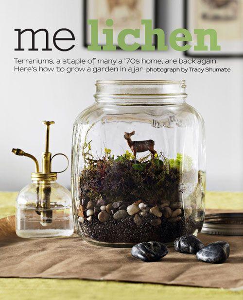 terraniums mini Poppytalk: New Covet Garden Issue