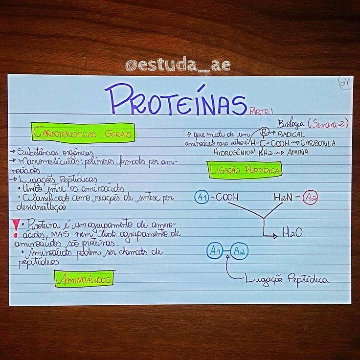"""103 curtidas, 1 comentários - RESUMOS E MAPAS MENTAIS  (@estuda_ae) no Instagram: """"Biologia - Proteínas • • • #medporamor #vaitermedsim #projetomedicina #medicina #foconojaleco…"""""""