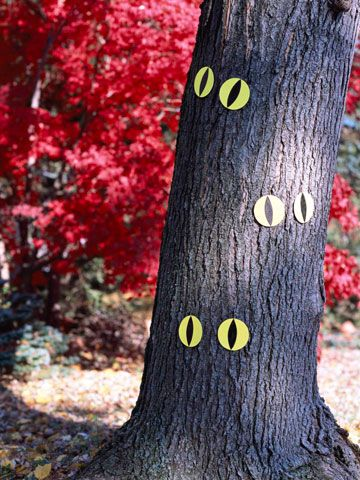 glowing eyes on tree halloween decoration--Either cut out some circles from glow-in-the-dark foam or cut circles from construction paper and color them in with glow-in-the-dark markers. Then, on either one, color in some scary eyes and stick them on the trees all around your house. That's all it takes to make the kids feel like they're being watched the entire time they're at your house.