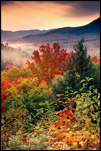 White Mountain Forest - Autumn Sunrise, New Hampshire | Flickr - Photo Sharing!