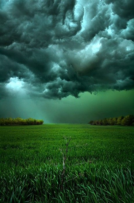 There Came a Wind by Phil Koch | onemillionphotographers