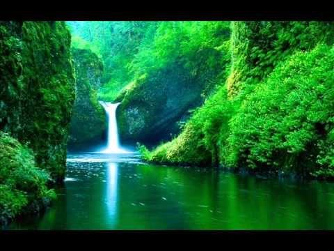 Sonidos de la Naturaleza y Música Relajante - Música de Relajación y Sonidos Relajantes para Dormir - YouTube