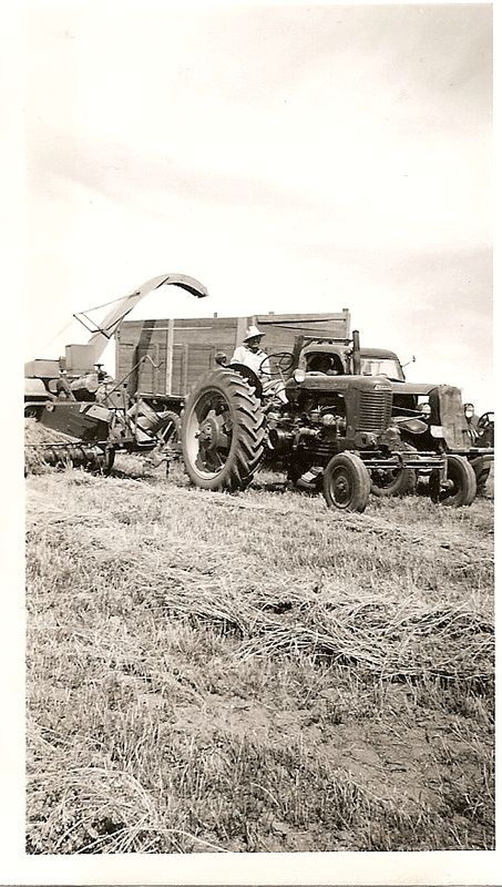 913 besten landwirtschaft bilder auf pinterest landwirtschaft traktoren und fahrzeuge. Black Bedroom Furniture Sets. Home Design Ideas