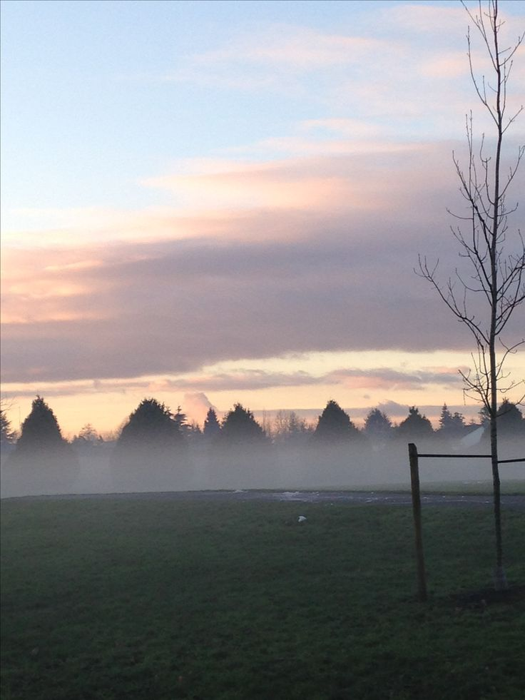 Misty afternoon in Cloverdale British Columbia