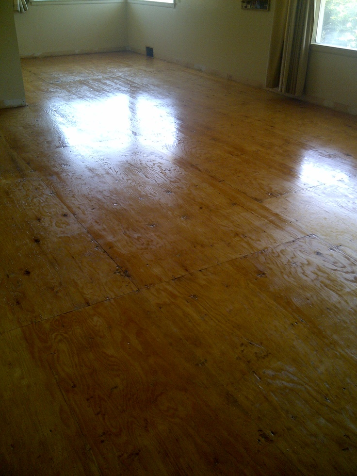 Finished Plywood Flooring ~ Images about floor ed on pinterest the