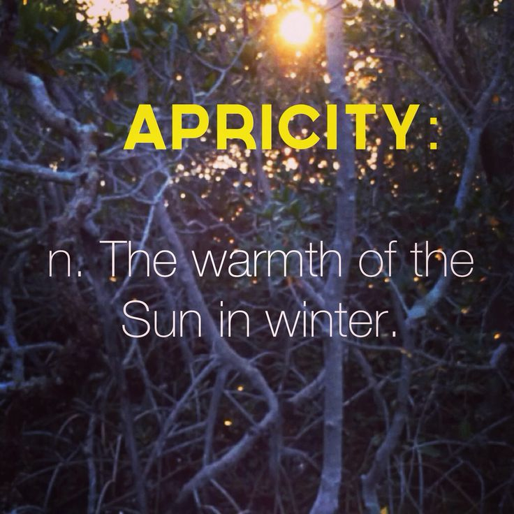 Word of the day: APRICITY: n. The warmth of the sun in winter.