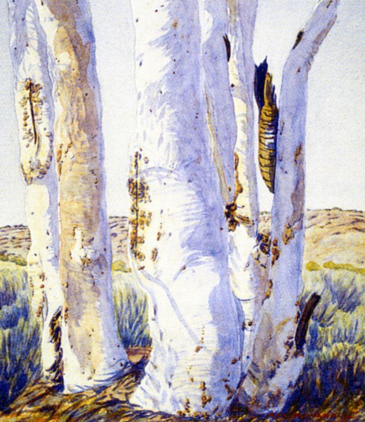 Ghost Gums,  Finke River, Palm Valley,Central Australia, Northern Territory - Albert Namatjira