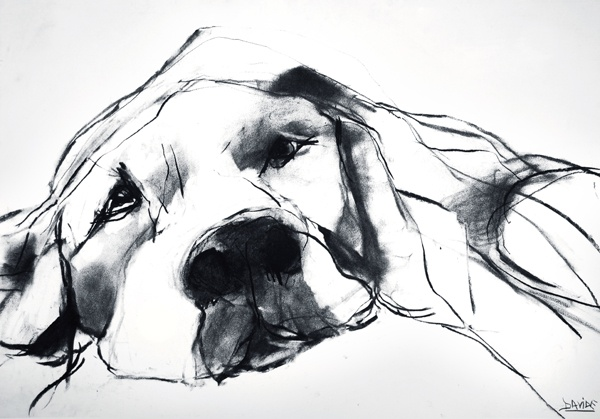 charcoal dog. Shame. But... really like the technique. Now, cat please!