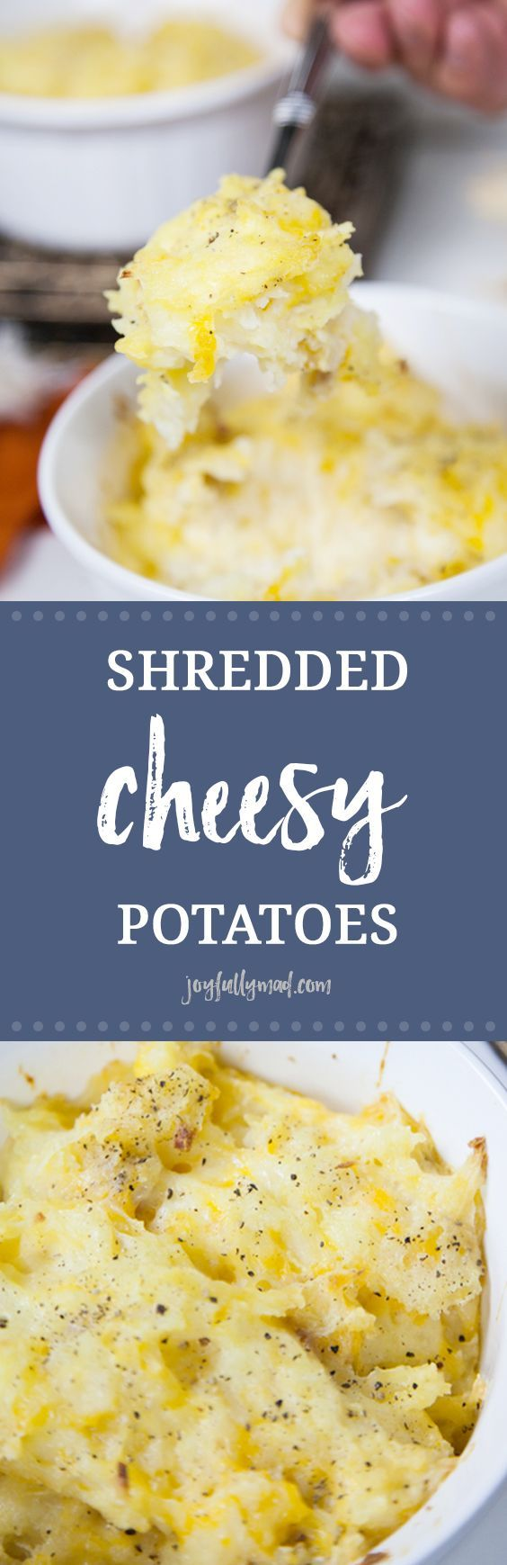 This recipe for Shredded Cheesy Potatoes is the perfect side dish for all of your holiday parties and family get togethers! These shredded cheesy potatoes are the perfect mashed potato alternative for Thanksgiving, Christmas or just because. The potatoes are cooked to perfection then shredded by hand and mixed with sour cream, cream of chicken soup and lots of shredded cheese for a side dish that is filly with yumminess!  via @joyfullymad