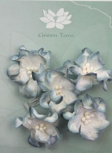 Green Tara Apple Blossoms 5pk ~ White/Blue | Always Treasured Scrapbooking