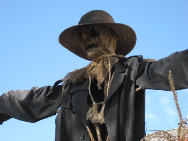 another scarecrow better face - Halloween Scare Crow