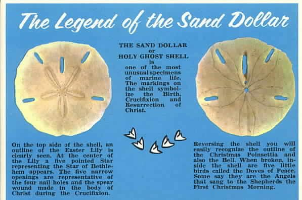 I am going to make this legend into a tattoo. A broken sand dollar, half showing the top and half the bottom on my hip, then with five doves flying up my back!