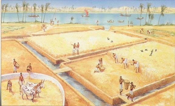 In de tijd van de jagers en boeren gingen de mensen voor het eerst zelf producten verbouwen. Ze werden zelfvoorzienend.