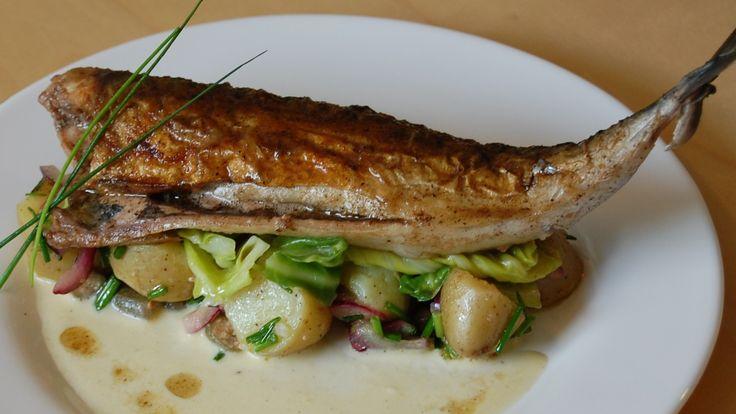 Server den sprøstekte makrellen med potetsalat, rømmesaus, smørdampet sommerkål eller agurksalat. Her får du Lise Finckenhagens oppskrift på stekt makrell med potetsalat og rømmesaus.
