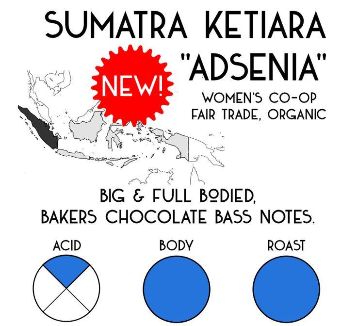 """Sumatra Aceh Ketiara """"Adsenia"""""""