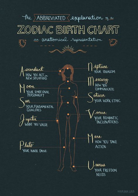 Anatomical Representation Of A Zodiac Birth Chart Divination