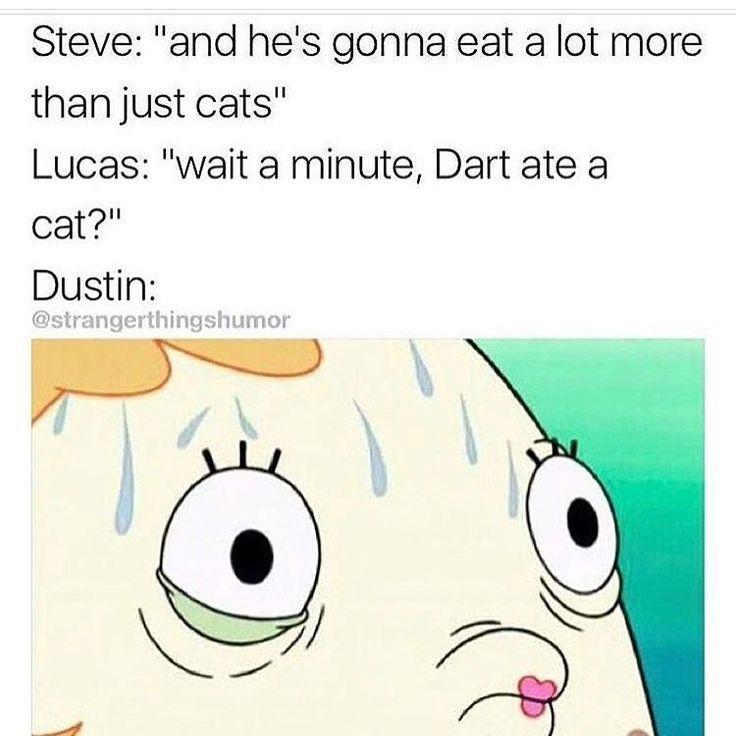 noooo. definitely not. yeah dart ate mews.