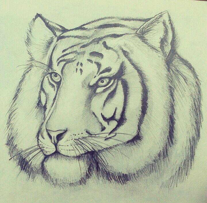 Sherkhan the tiger!!!