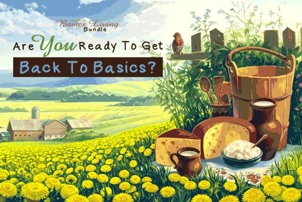 Get Back to Basics Now