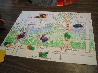 Learning in Place: The Carbon Cycle Game