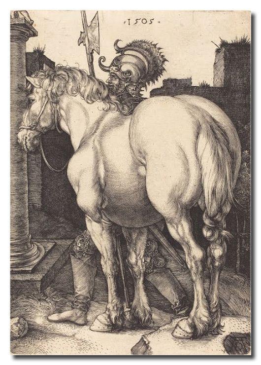 Reprodukcja Albrecht Durer kod obrazu durer95