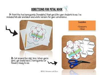Water cycle- Science Interactive Notebook foldable