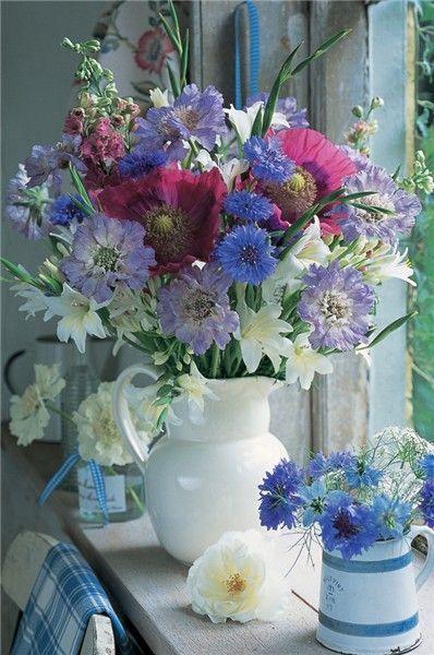 Flores do campo...