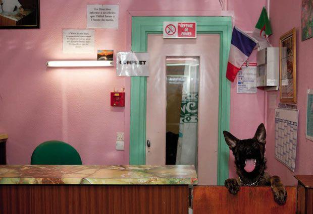 """""""Paris"""" de Martin Parr, 2014, à la Maison Européenne de la Photographie"""