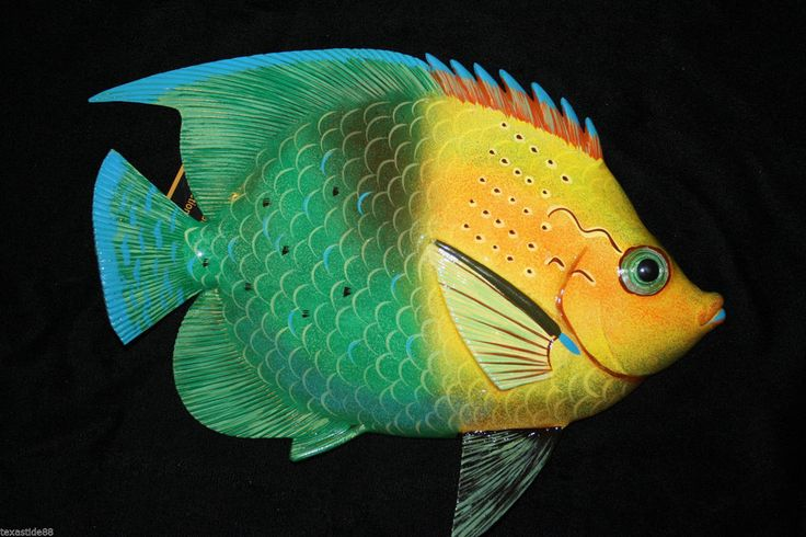 143 best TROPICAL FISH images on Pinterest