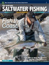 17 best images about fishing in nh on pinterest fishing for Saltwater fishing magazines