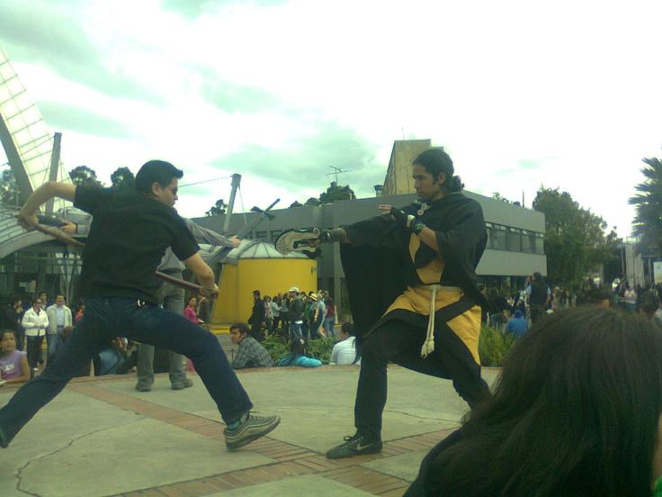 jugando a pelear