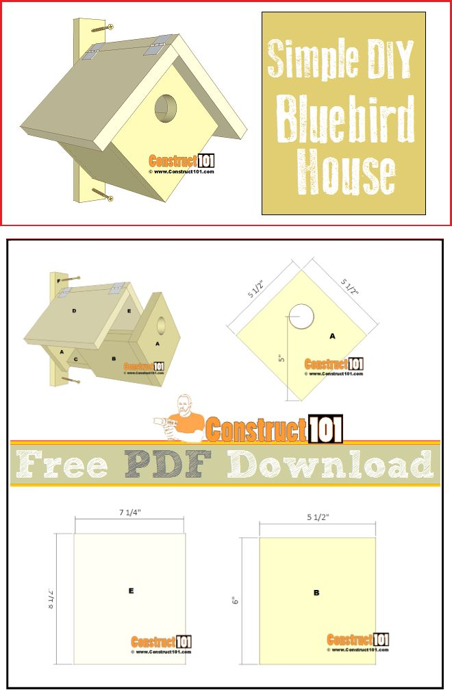 Terrific 17 Best Ideas About Bluebird House Plans On Pinterest Bird House Largest Home Design Picture Inspirations Pitcheantrous