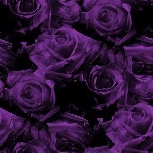 Myspace Dark Purple Roses Pattern Background Twitter