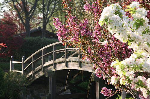 Missouri Botanical Gardens - Japanese Garden 4344 Shaw Blvd 63110