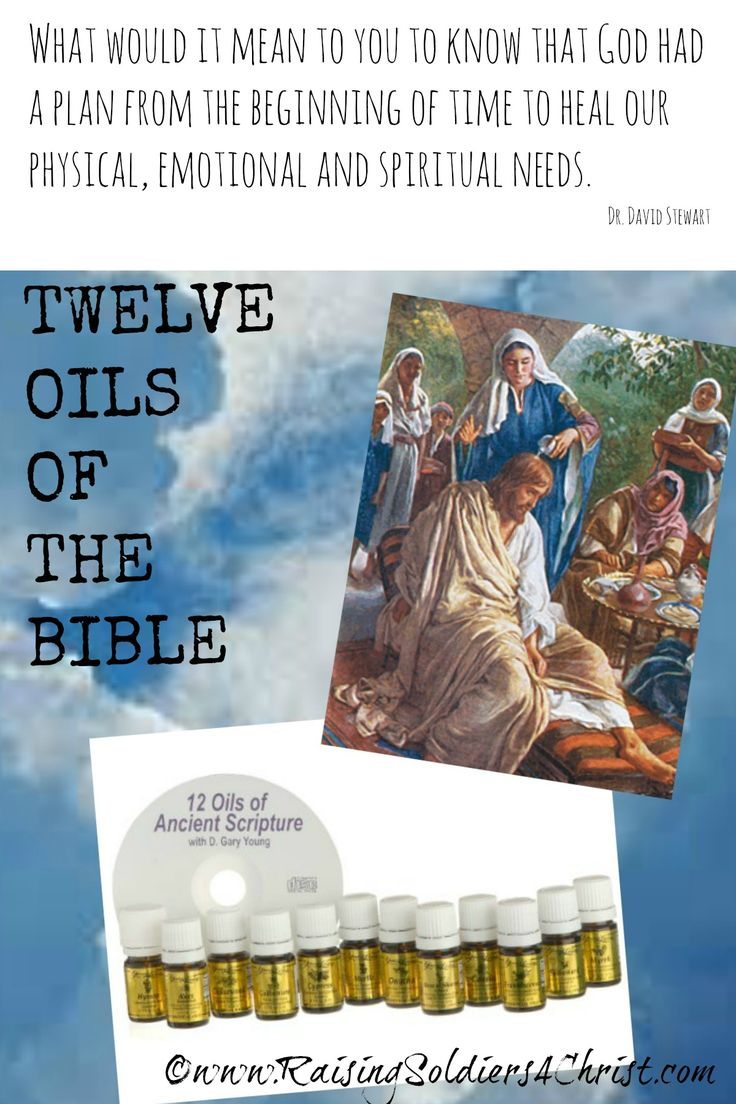 12 Oils of the Bible Graphic