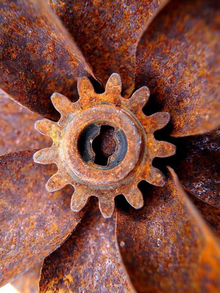 1000+ images about Rust never sleeps on Pinterest | The ...