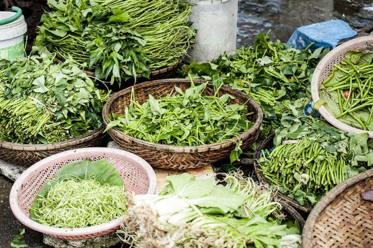 Lass Nahrung deine Medizin sein — Basische Lebensmittel Essen um zu Leben vs Leben um zu Essen  Energiereiche, vitale Lebensmittel sind die beste Nahrung. Fange wieder an, naturbelassene, frische, enzymreiche Lebensmittel zu dir zu nehmen!  detox-basen.de Wildkräuter