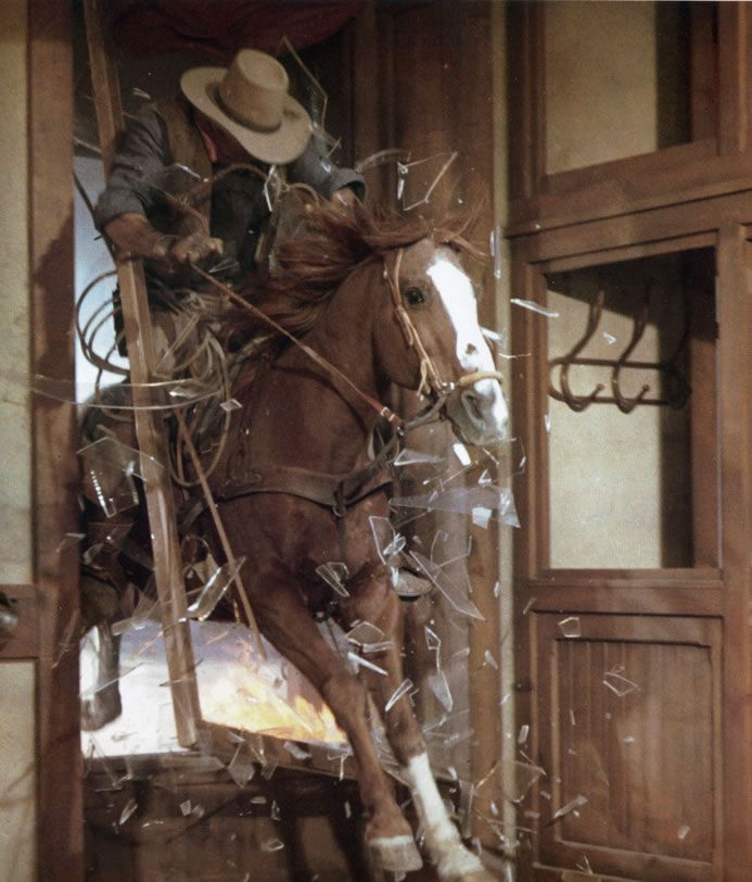 Cocaine, one of the most popular stunt horses of his day, crashing through a window in the John Wayne movie Chisum (1970). Photo from the book Hollywood Hoofbeats. Read more about the book at http://ilovehorses.net/blog/history-2/the-humane-movement-goes-to-hollywood-to-protect-horses/