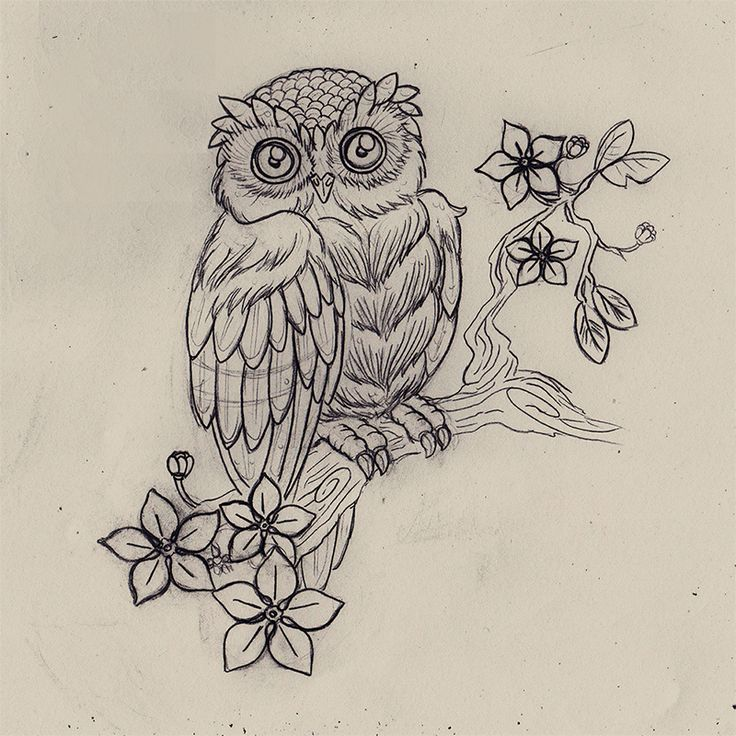 Tattoo Owl by ~N-2tt on deviantART