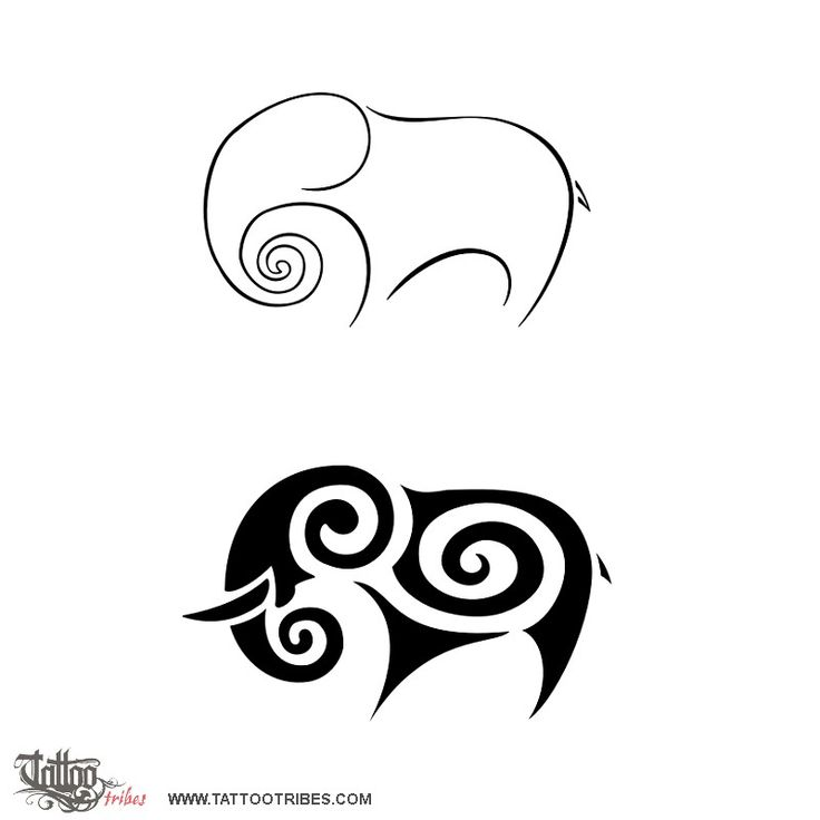 Elephant    Elephants are known for their memory, but they have another very important character: socializing.    Thus a newborn is greeted and grown with commitment and dedication by every member of the herd.    The spiral is a symbol of eternity and the unfolding fern frond is a symbol borrowed from Maori culture to symbolize a new life.    Requested by Tree to mark the birth of her baby.
